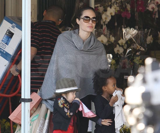 Slide of Angelina Jolie With Zahara and Shiloh at Whole Foods