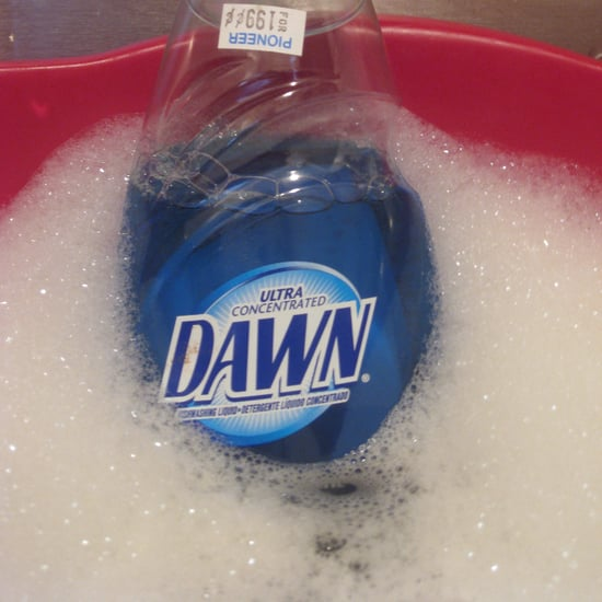 Dawn Dish Soap as Pet Shampoo