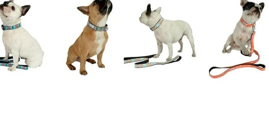 New Product Alert! Four New Fall '09 Collar Designs From Bella Bean