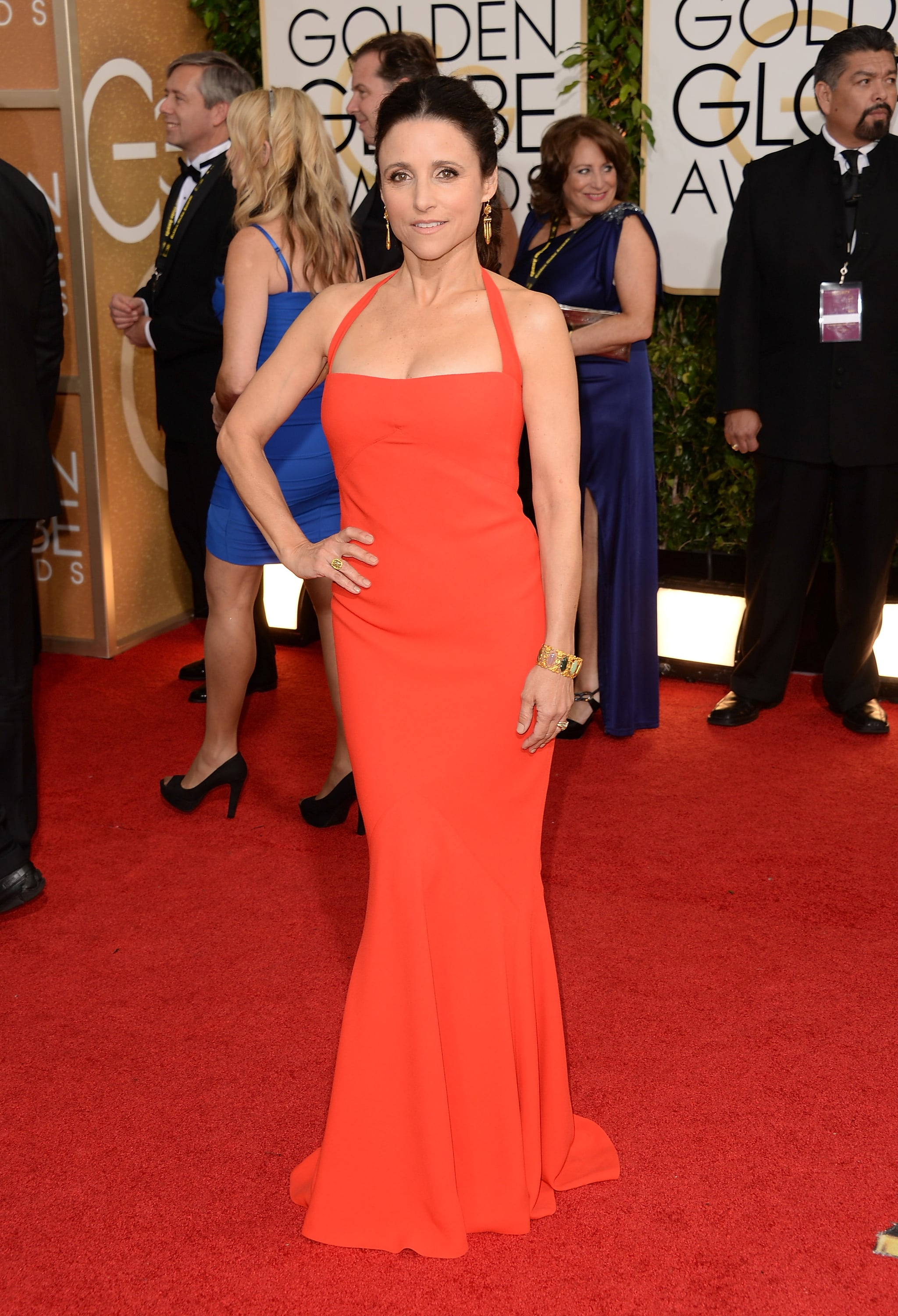 Julia Louis-Dreyfus at the Golden Globes in Narciso Rodriguez