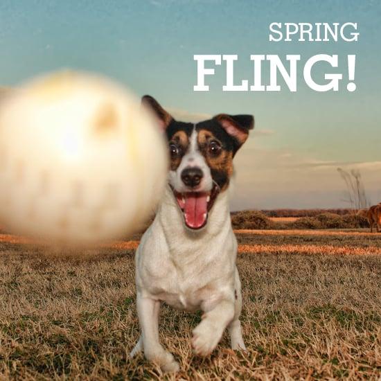 Spring Training: 5 Routines to Start This Season