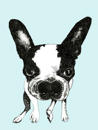 Corelladesign's Boston Terrier Print ($20) is a simple and sweet illustration.