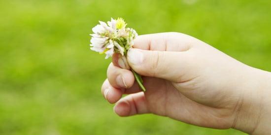 An Adventurer's Guide to Teaching Love