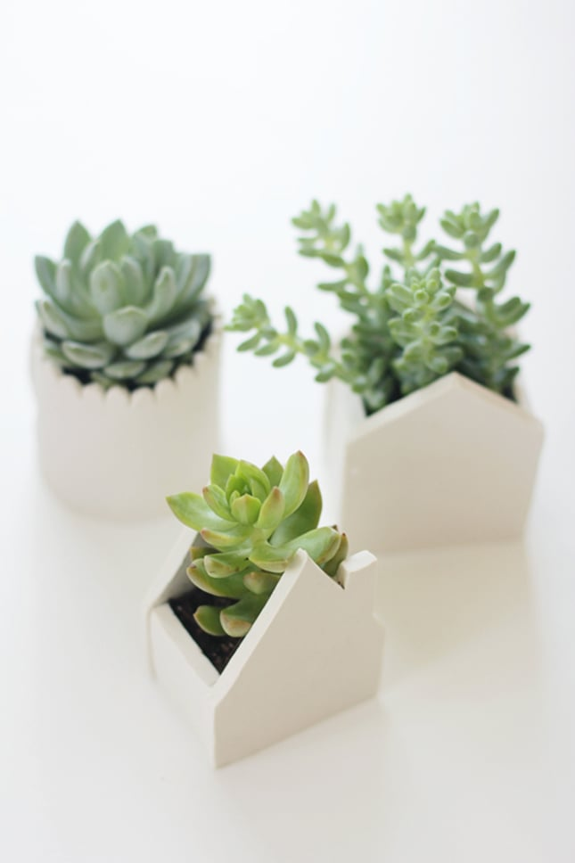 Create adorable succulent planters with these handmade clay pots. Source: Say Yes to Hoboken