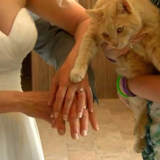 Couple Weds at The Cat House on the Kings