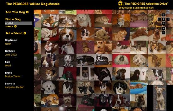 Million Dog Mosaic