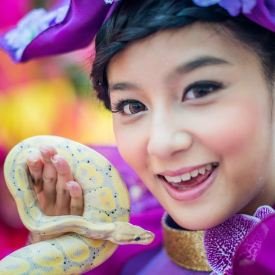 Year of the Snake Personality Traits