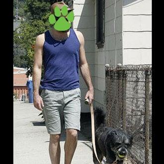 PetSugar Weekly Recap