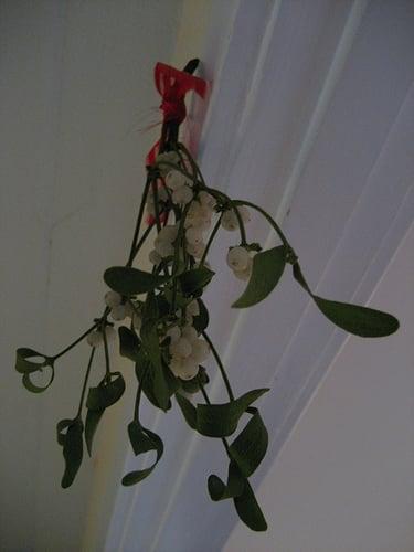 Do You Hang Mistletoe?