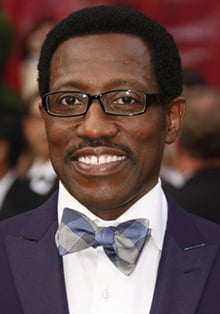 Wesley Snipes Granted Bail Yesterday