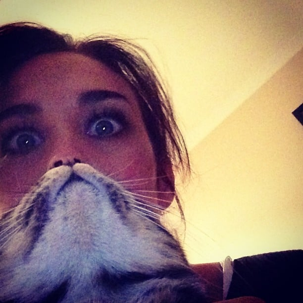 """Megan Gale tried her hand at """"catbearding."""" Source: Instagram user megankgale"""