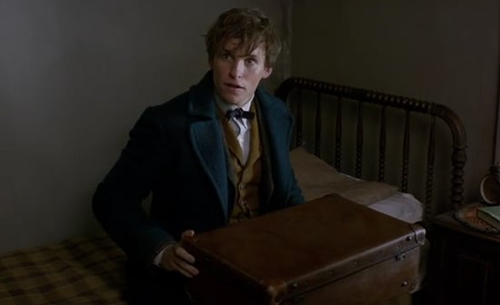 'Fantastic Beasts and Where to Find Them' Trailer Is Your Harry Potter Fix (VIDEO)