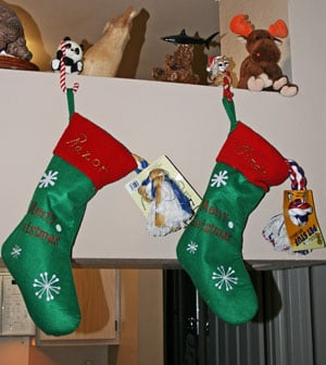 Do Your Pets Have Stockings, Too?