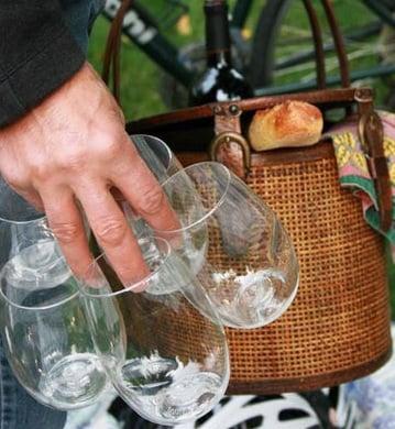 Govino Portable Wine Glasses