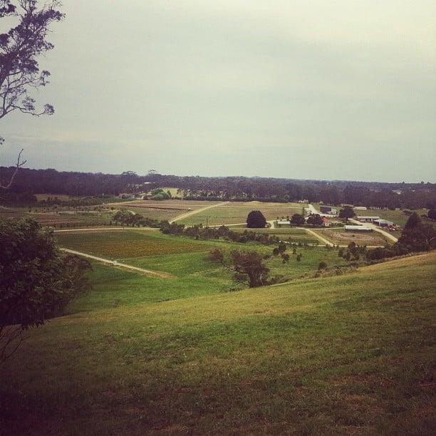 BellaSugar's Alison took in the sights at the stunning Jurlique Farm in the Adelaide Hills.