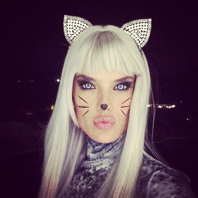In 2014, Alessandra Ambrosio took to Instagram to pose as a sexy feline.