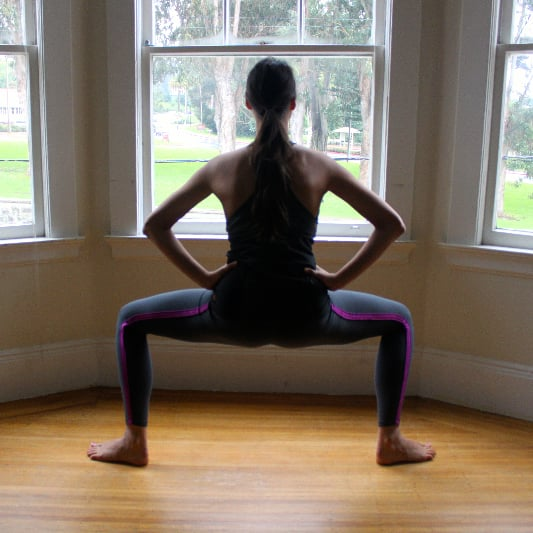 Barre-Style Plie Squat Exercise