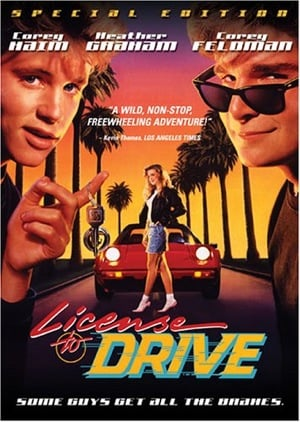 Back to Cool: License to Drive