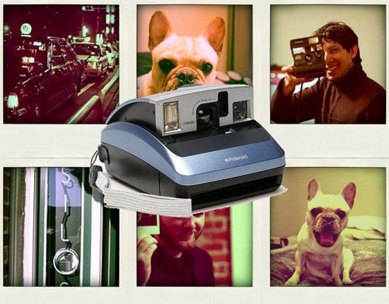 Sugar Shout Out: Polaroid's Triumphant Return From Extinction
