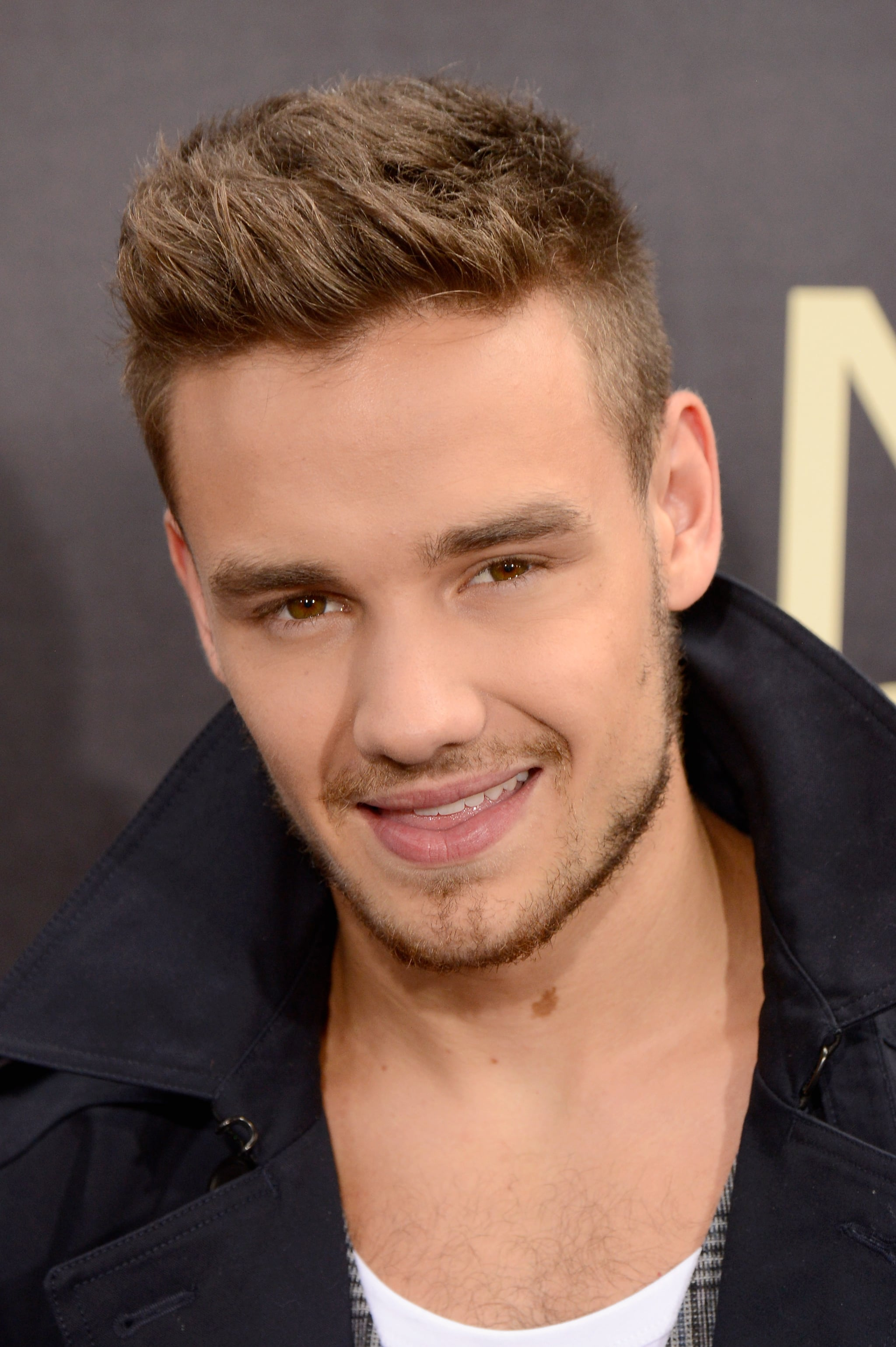Liam Payne attended the NYC premiere of the One Direction movie.