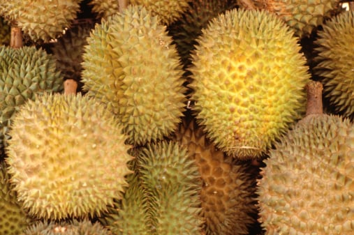 Should Durian Be Destinked?