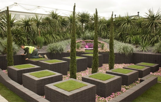 RHS Chelsea Flower Show Opens Today