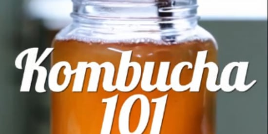 Here's How To Brew Your Own Kombucha