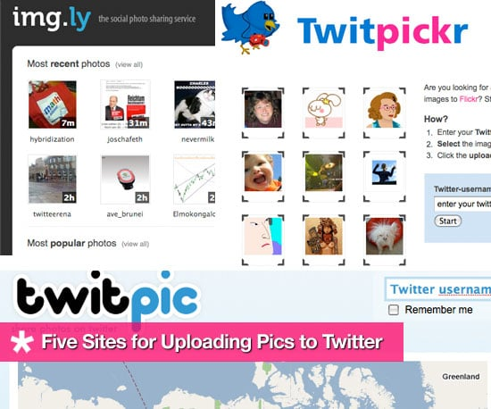 Five Handy Sites for Uploading Pics to Twitter