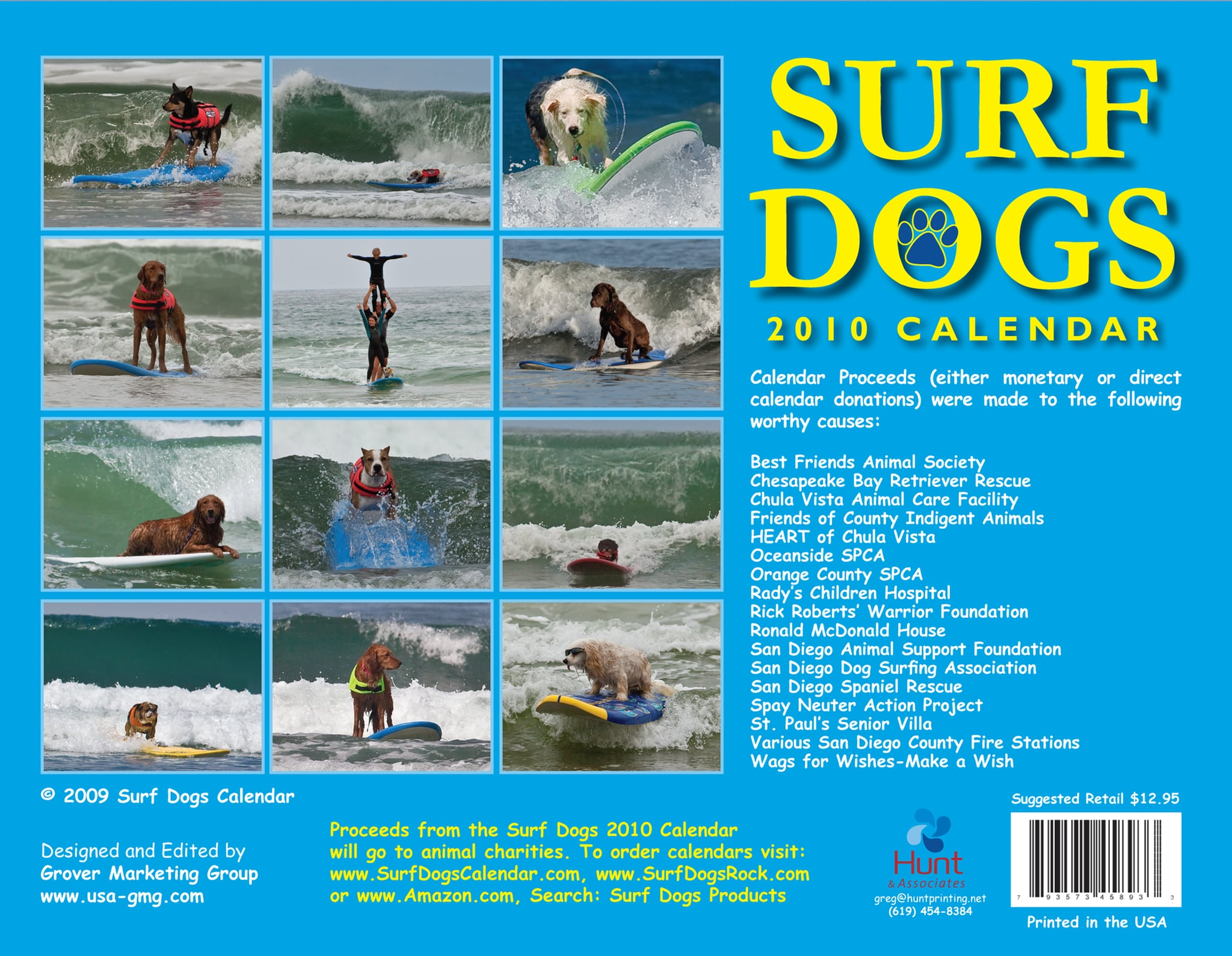 Have You Ever Seen a Surfing Dog?