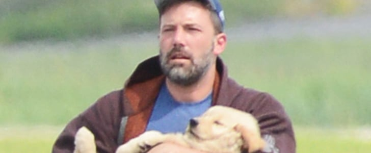 Ben Affleck Holding a Cuddly Puppy Is the Sweetest Thing You'll See Today