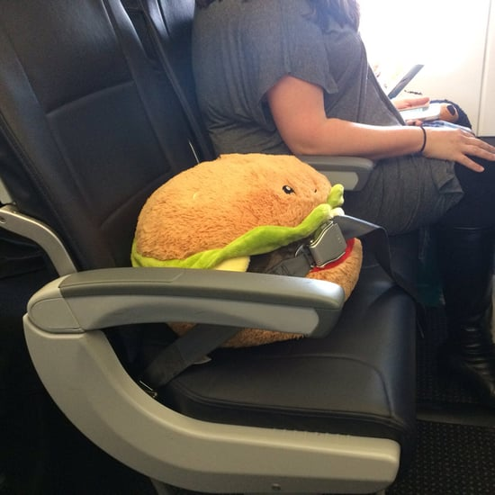 Stuffed Burger Rides on a Plane