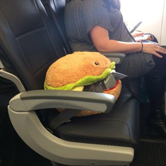 Stuffed Burger Rides on a Plane