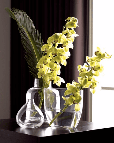 Do You Decorate With Cut Orchids?