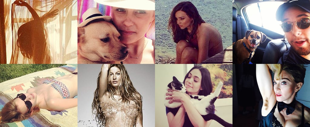 We Can't Get Enough Cute Celebrity Candids!