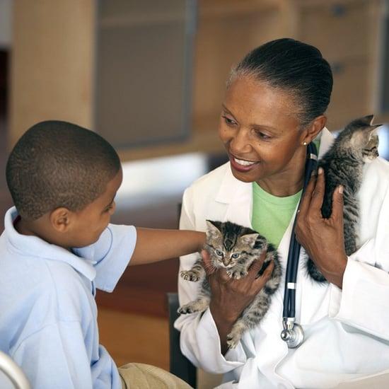 How Often Do Cats Need Rabies Shots?