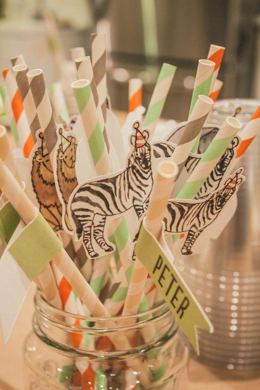 A Stripe Safari