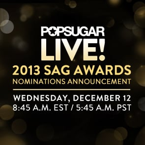 SAG Awards Nominations Announcement 2013
