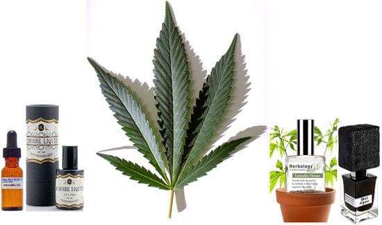 Cannabis Fragrances