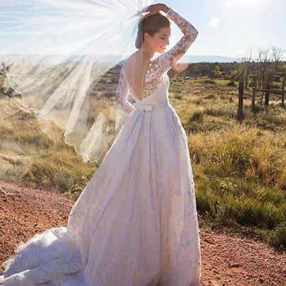 Allison Williams Shares Another Gorgeous Picture From Her Wedding