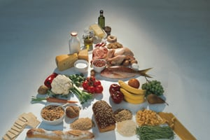 USDA Proposes New Dietary Guidelines For 2010