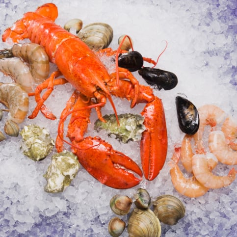 Most Popular Shellfish in America