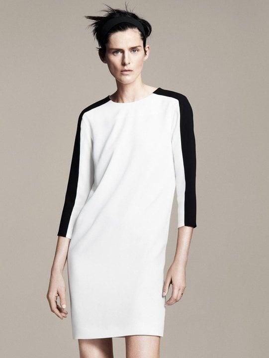 Stella Tennant Stars in Zara's Spring 2011 Lookbook