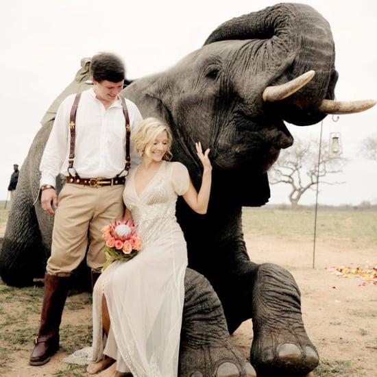 South African Safari Wedding With Elephants