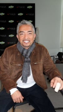 Cesar Millan and Advice For Dogs and Company and Jumping on Strangers