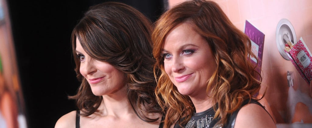 Tina Fey and Amy Poehler Show Off Their Sisterly Bond on the Red Carpet