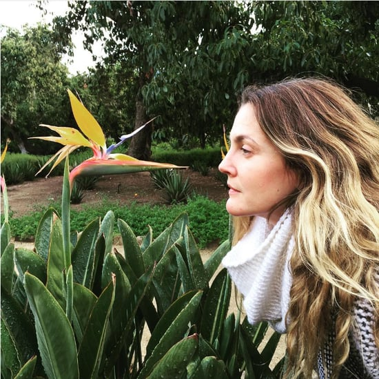 Drew Barrymore's Love of Flowers