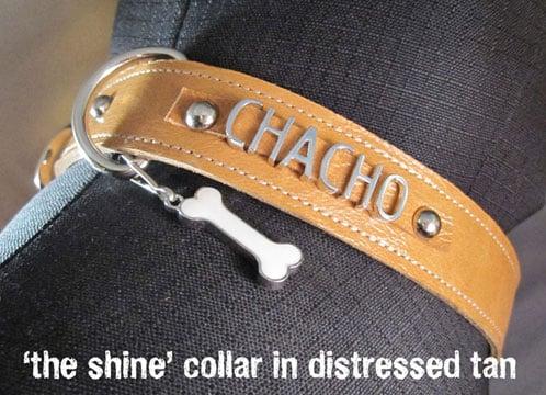 Customizable Pet Collars