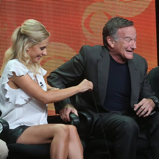 Robin Williams Interview For The Crazy Ones