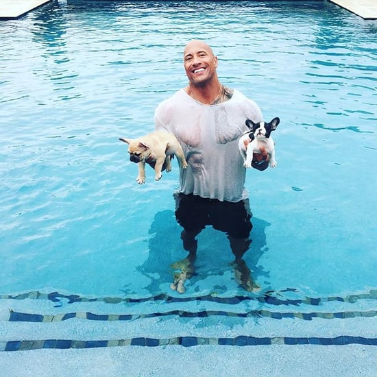 "Dwayne ""The Rock"" Johnson Saves Puppies From Drowning"
