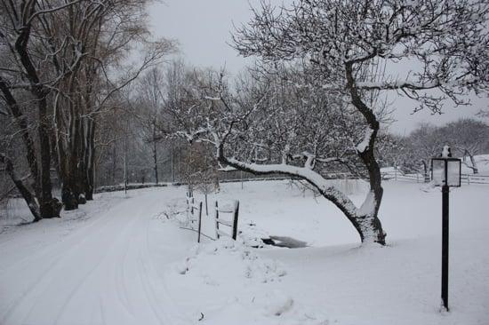 Do You Hire a Snow Plow Service?